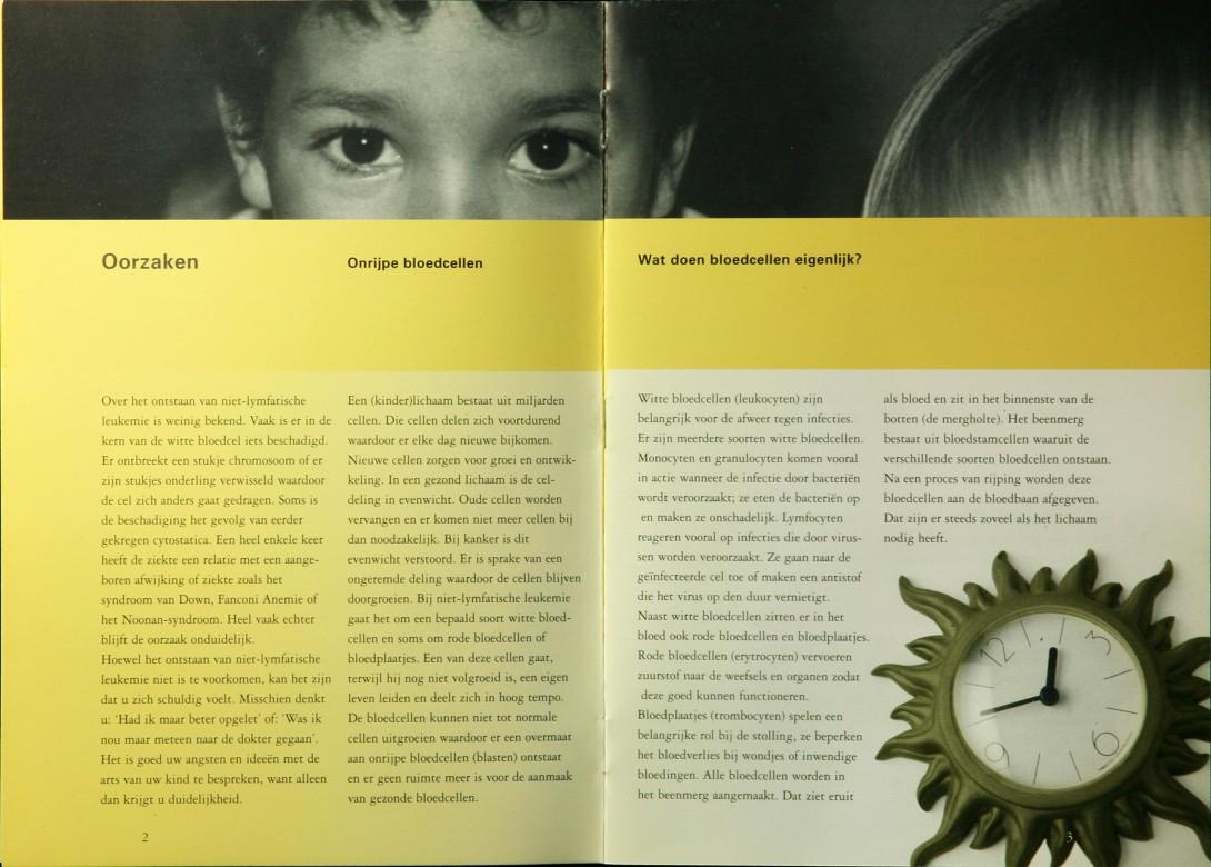 brochure VOKK 2 IMG_4958 kleiner